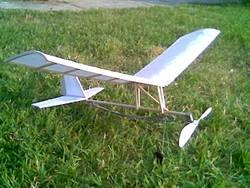 Hangar-rat