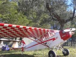 Piper Cub Clipped Wing  Sig Ki